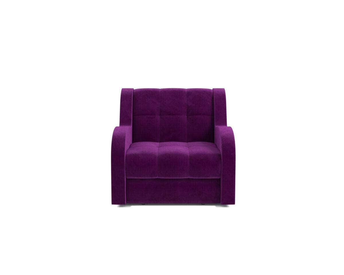Аккордеон Барон (Фиолет) 2